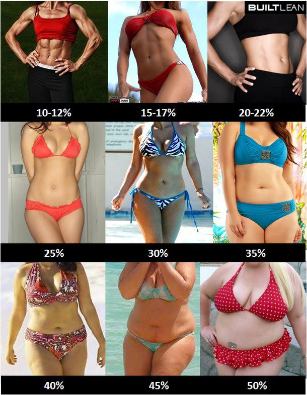 womens body fat scale